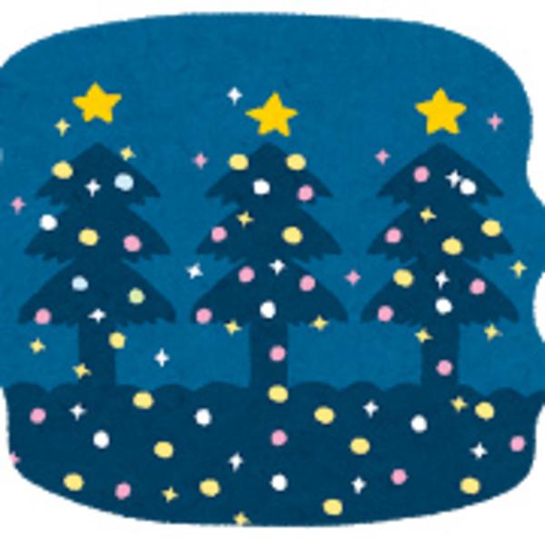 クリスマス(*´ω`*)